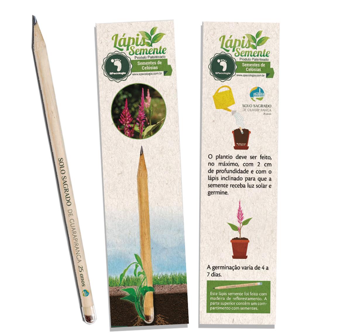 Lápis Ecologico c/ semente SSG 25 anos